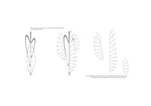 Prototype Diagrams